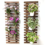 Wall Planter - Wooden air Plant Holder for Indoor and Outdoor Plants. Used as Hanging Vertical Garden Planter. Create own Gar