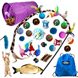 Ozoosh Pets 29 pcs Cat Toy Set w Cat Tunnel Feather and Teaser Wand Catnip Assorted Balls Mice Fish and Bell Toys for Cats w