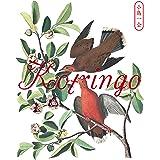小鳥一会「小鳥観察 kotringo Best」発売記念ライブ [DVD]