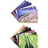 ピンナップ 人気柄 ポストカード 12種 各1枚 計12枚 セット 日本の世界遺産