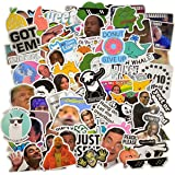 (106 Pcs) Funny Meme Vinyl Stickers Pack, Vine Stickers for Laptop, iPhone, Water Bottles, Computer, and Hydro Flask, DIY Dec