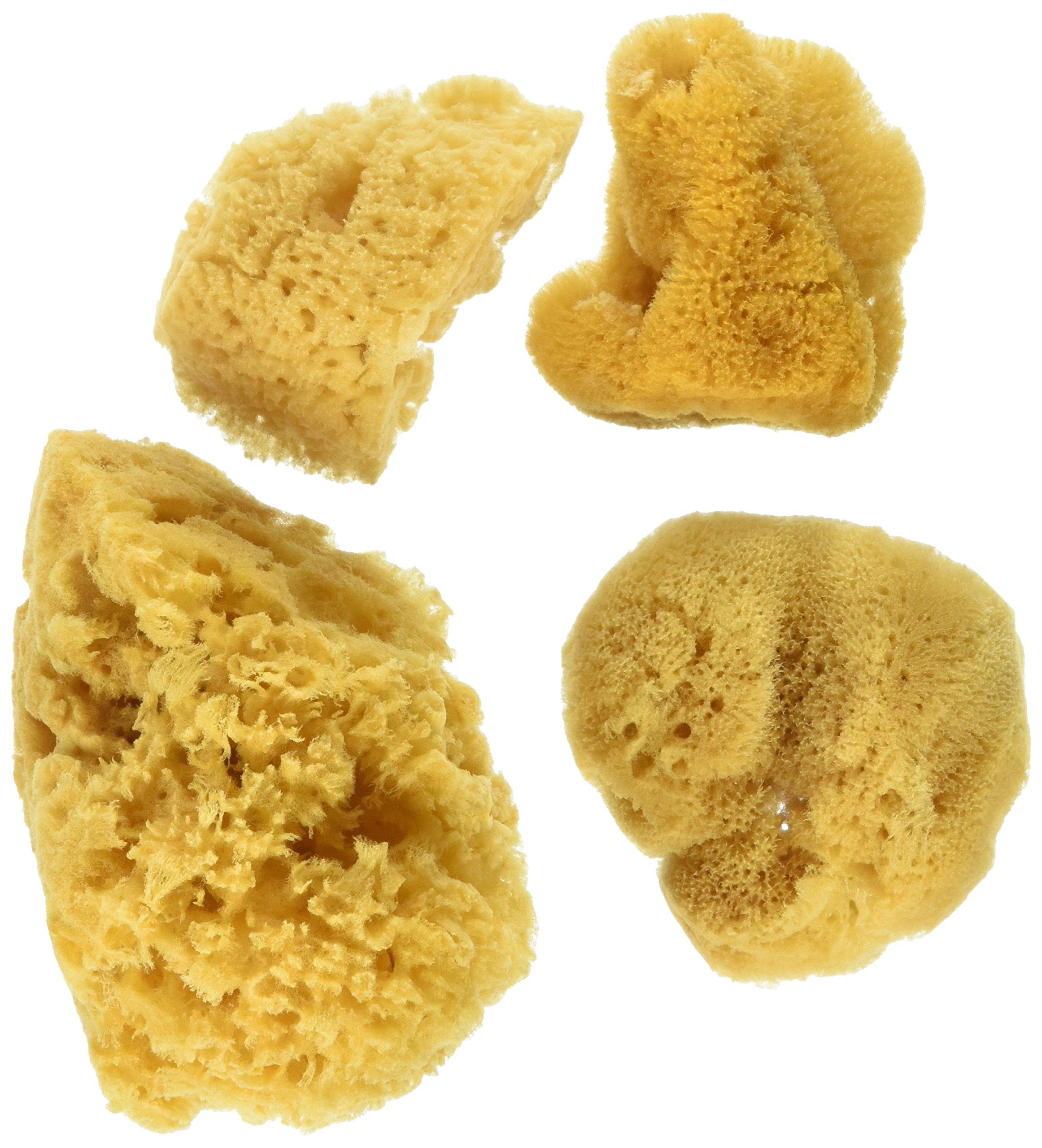 Synthetic Artist Sponges 3//Pkg
