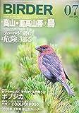 BIRDER(バーダー)2020年7月号 高山・亜高山帯の鳥/フィールドに潜む危険を知る