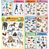 Learn Chinese for Kids Poster Set. Montessori-Inspired. Bilingual with Chinese-English. For Kids, Toddlers, and Preschoolers.