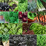 Mixed Autumn Winter 1200+ Vegetable and HERB Seeds Heirloom 10 Packs Cool Season