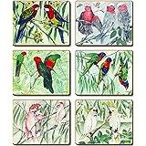 Cinnamon CMC389 Australian Parrots Coasters