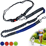 Zenify Hands Free Dog Lead for Running, Walking, Hiking, Canicross Dual Handle Comfortable Waist Belt Leash Band Reflective S