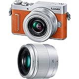 パナソニック ミラーレス一眼カメラ ルミックス GF10 ダブルレンズキット 標準ズームレンズ/単焦点レンズ付属 オレンジ DC-GF10W-D