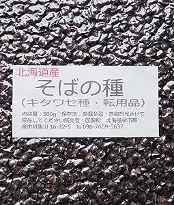 匠製粉 令和元年北海道産 そばの種(キタワセ種・転用品) 500g