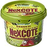 ハイポネックス ネクスコート観葉植物用 500g