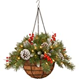 National Tree 20 Inch Frosted Berry Hanging Basket with Red Berries, Cones and 50 Battery Operated Warm White LED Lights (FRB