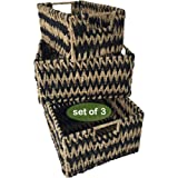Set 3 Seagrass Wicker Storage Baskets for Home Organization and Decor | Closet Woven Shelf Baskets for Shelves with Insert Ha