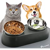 Petasy Elevated Cat Food Bowls with Silicone Feeding Mat for Kittens, Cats, Small Dogs - Anti-Stress Raised Stainless Steel P