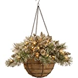 National Tree 20 Inch Glittery Bristle Pine Hanging Basket with White Tipped Cones and 50 Battery Operated Warm White LED Lig