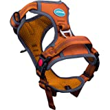 ThinkPet No Pull Harness Breathable Sport Harness with Handle - Reflective Padded Dog Safety Vest Adjustable Harness, Back/Fr