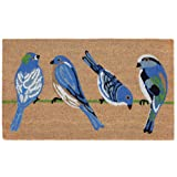 "Liora Manne NTR12206112 Natura Summer Blue Birds Natural Outdoor Welcome Coir Door Mat, 18"" X 30"","