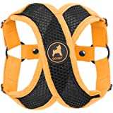 Gooby - Active X Step-in Harness, Choke Free Small Dog Harness with Synthetic Lambskin Soft Strap, Orange, Large