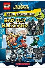 Bad Guy Blizzard (LEGO DC Comics Super Heroes: Brick Adventures) (LEGO DC Super Heroes Book 1) Kindle Edition