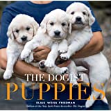The The Dogist Puppies