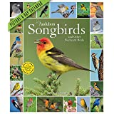 2021 Audubon Songbirds and Other Backyard Birds Picture-A-Day Wall Calendar