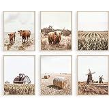 HAUS AND HUES Highland Cow Art and Farmhouse Wall Decor Cow Wall Art and Farmhouse Pictures | Cow Decor | Cow Prints Wall Art