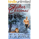 A Shifter for Christmas (Shifter for the Holidays Book 1)