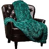 Chanasya Super Soft Shaggy Longfur Throw Blanket | Snuggly Fuzzy Faux Fur Lightweight Warm Elegant Cozy Plush Sherpa Fleece M