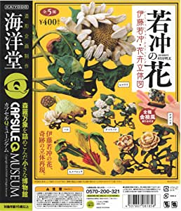 カプセルQミュージアム 伊藤若冲・花卉立体図 若冲の花 [全5種セット(フルコンプ)]