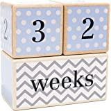 LovelySprouts Solid Wood Milestone Age Blocks | Choose from 3 Different Color Styles (Blue) | Baby Age Photo Blocks | Perfect