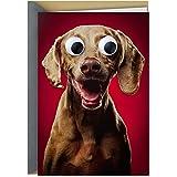 Hallmark Shoebox Funny Valentines Day Card, Anniversary Card, or Love Card (Googly Eye Dog)