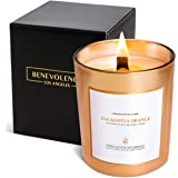 Benevolence LA Scented Candles Soy Candles - Aromatherapy Candles Relaxing Candles Rose Gold Glass Decorative Candle Perfect