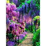 DIY Paint by Numbers Kit for Adults - Purple Garden | Paint by Number Kit On Canvas for Beginners | Home Wall Decor | Pre-Pri