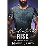 Calculated Risk (Blackbridge Security Book 5)