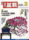 月刊近代盆栽 2020年 02 月号 [雑誌]