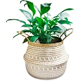 La Maia Medium Natural & Plus Woven Seagrass Belly Plant Basket with Handles Woven Planter Basket for Storage, Laundry, Picni
