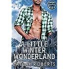 A Little Winter Wonderland (Montana Daddies)