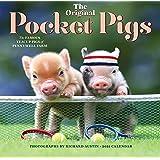 2021 Pocket Pigs Wall Calendar