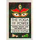 Yoga of Power: Tantra, Shakti, and the Secret Way