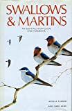 Swallows & Martins: An Identification Guide and Handbook