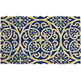 DII Natural Coir Fiber, 18x30 Entry Way Outdoor Door Mat with Non Slip Backing - Blue Tunisia Scroll