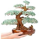 KALIFANO Natural Aventurine (1,251 Gemstone Count) Chakra Crystal Tree with Healing Properties - Bonsai Feng Shui Money Tree
