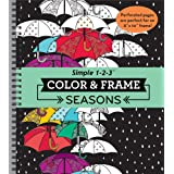 Color & Frame Coloring Book - Seasons
