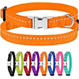 CollarDirect Small Dog Collar Nylon Reflective Puppy Collar Adjustable with Metal Buckle Black Pink Mint Green Lime Orange Re