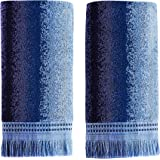 SKL Home by Saturday Knight Ltd. Eckhart Stripe 2-Piece Hand Towel Set, Blue