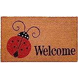 """Calloway Mills 121432436 Ladybug Welcome Doormat 24"""" x 36"""", Multicolor"""