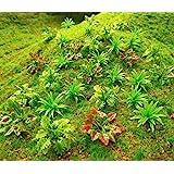 90pcs Mini Model Trees Plants Flowers Green Shrubs Bush Model, Aritificial Plants Model Train Scenery Architecture Flower Mod