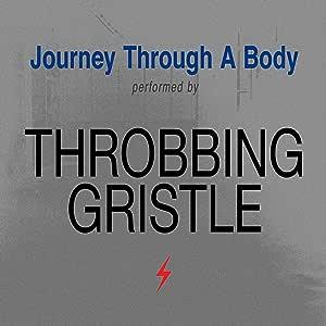 Journey Through A Body [解説・紙ジャケット / HQCD(高音質CD)仕様 / 国内盤] ( TRCP234)