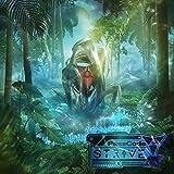STRIVE (初回限定盤)(DVD付)
