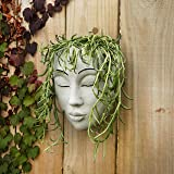 Meadow & Oak Head Planter / Place On A Wall Or Surface / Outdoor Face Planter With Drainage For Cute Plants / Resin Planter F