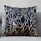 TAOSON Pack of 2,Irregular Abstract Lines Geometric Bronzing Printed Cozy Soft Throw Pillow Cases Cushion Covers Shells for S